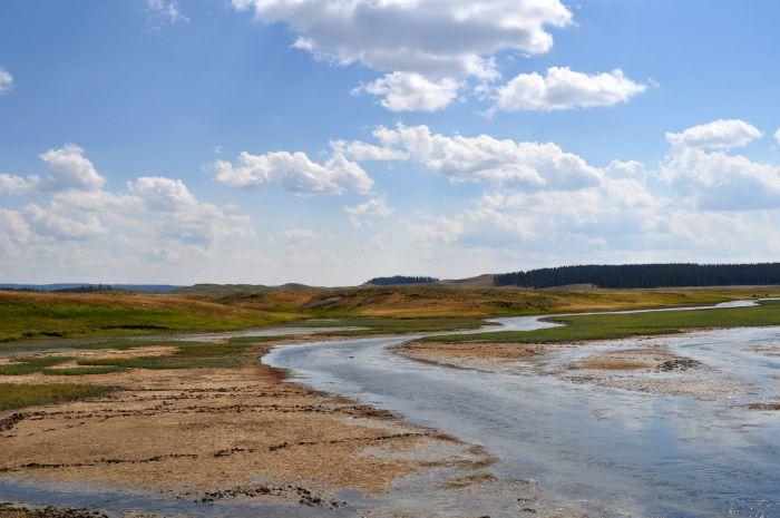 hayden valley yellowstone